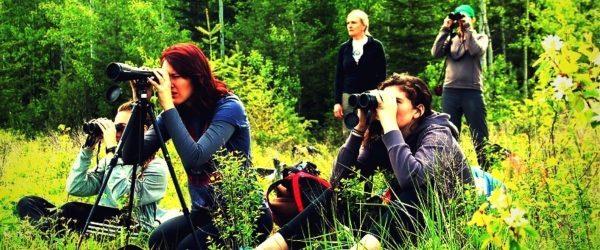 Best spotting scope for bird watching